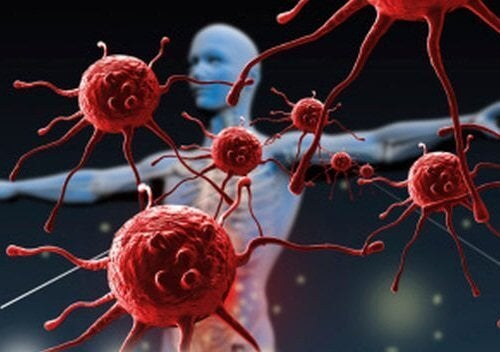 Един резен папая дневно укрепва имунната система
