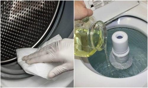 Премахнете мухъла от пералната машина с три зелени решения