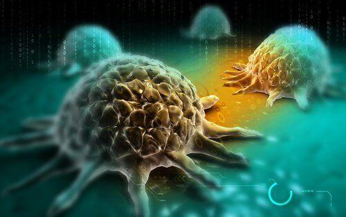 ракови клетки