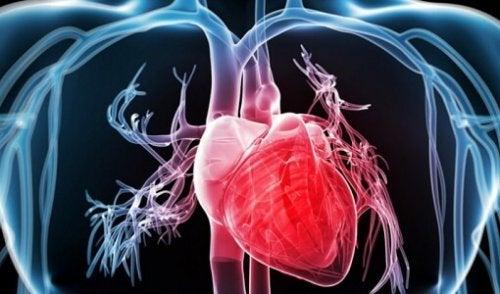 захарната ябълка подобрява сърдечно-съдовото здраве
