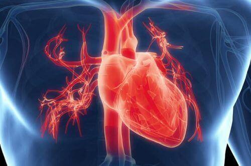 този минерал предпазва сърцето ви от аритмии