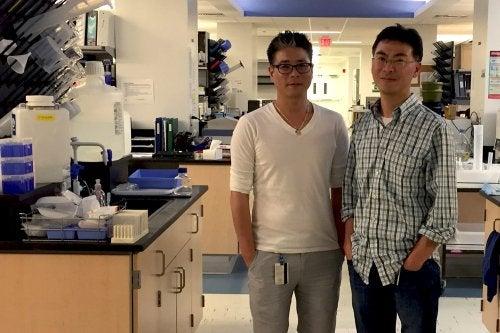 ново проучване на рака на белите дробове