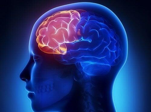 4 упражнения за бистър ум