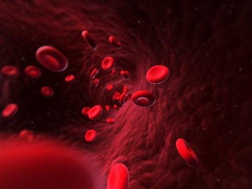 ако пиете топла вода, ще разширите кръвоносните съдове