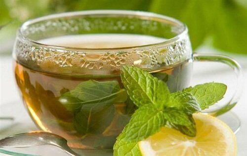 усккорете метаболизма си с напитка от мента