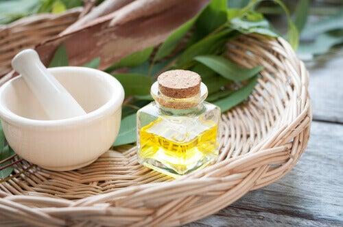 масло от евкалипт при наличие на въшки
