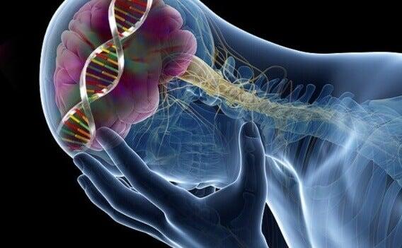 9 изненадващи последици от липсата на серотонин