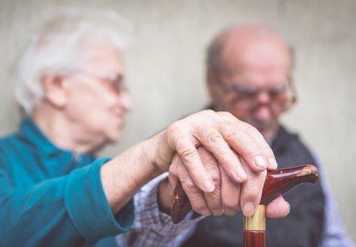 канелата предотвратява болестта на Алцхаймер