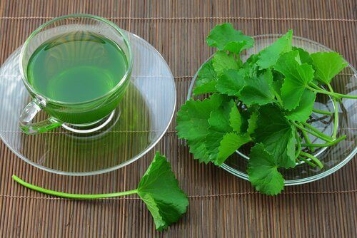 чай от целина чисти токсините от тялото ни