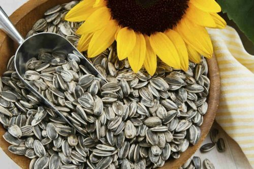 слънчогледови семки за борба с целулита