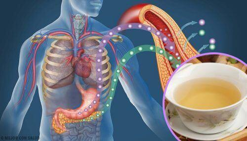 4 рецепти за чай за понижаване на нивото на кръвната захар