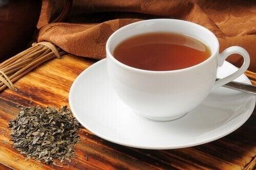 Чай от болдо при проблеми с газовете