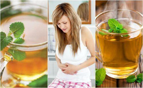 5-те най-добри чая за успокояване на синдрома на раздразнените черва