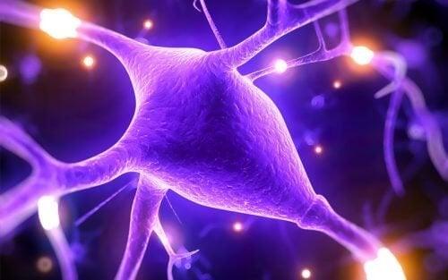 5 причини, поради които магнезият помага да се подобрят вашите умствени възможности