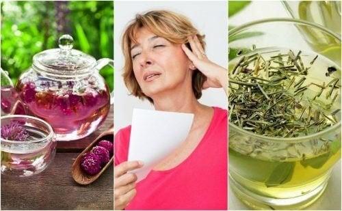 Страдате по време на менопауза? 6 натурални средства против горещите вълни