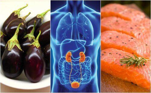 7 храни подпомагащи по естествен начин здравето на бъбреците