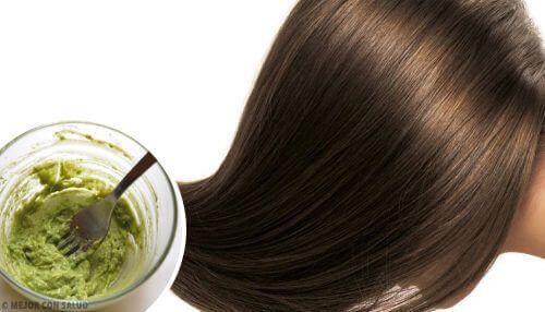 Маска с авокадо и натурално кисело мляко за изтощената коса