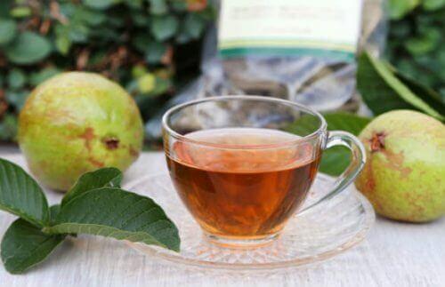 понижете кръвната си захар с чай от гуава