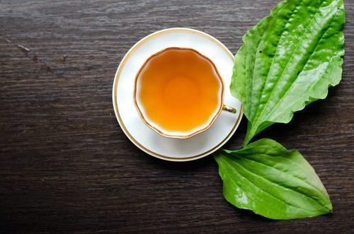 чай от живовляк против петната по лицето