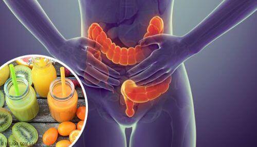5 храни идеални за прочистването на дебелото черво