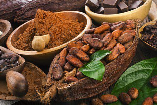 какаото е от храните, които се борят с безпокойството и стресът в ежедневието