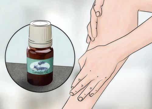 Лавандулата: вълшебно етерично масло за дома и кожата