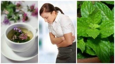 Облекчете симптомите на синдрома на раздразненото черво с тези 5 лечебни билки