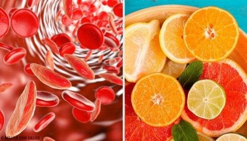 5 начина за повишаване на количеството на желязото в кръвта