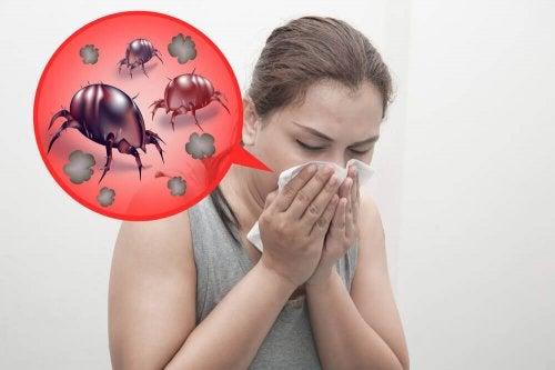 алергията към домашните акари е преодолима, ако вземете подходящите мерки