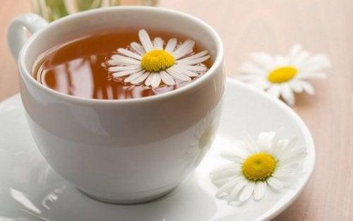 чаят от лайка  - едно от прекрасните средства срещу безсънието