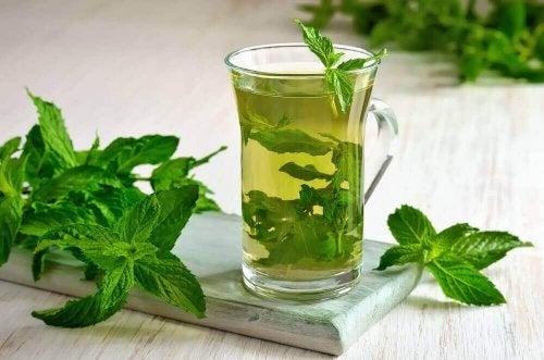 Открийте безкрайните ползи за здравето на чая от мента