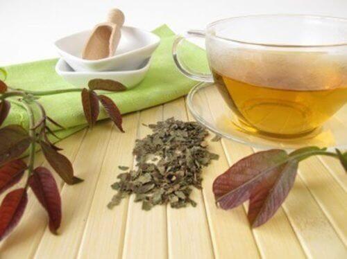 чай от орехова кора против зъбната плака