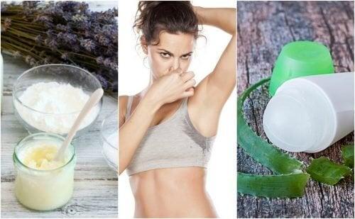 5 натурални дезодоранта за премахване на миризмата на подмишниците