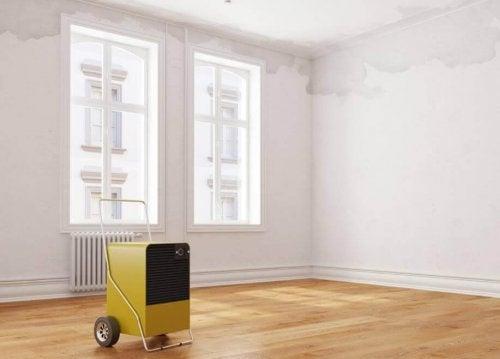 Използвайте влагоизсушител, за да предотвратите влагата в дома