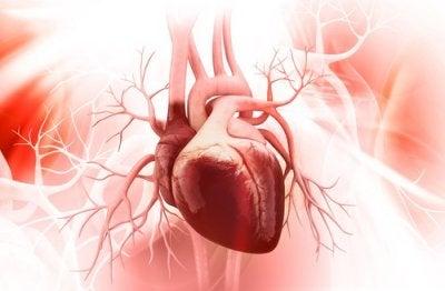 5 начина за предотвратяване на синдромът на разбитото сърце
