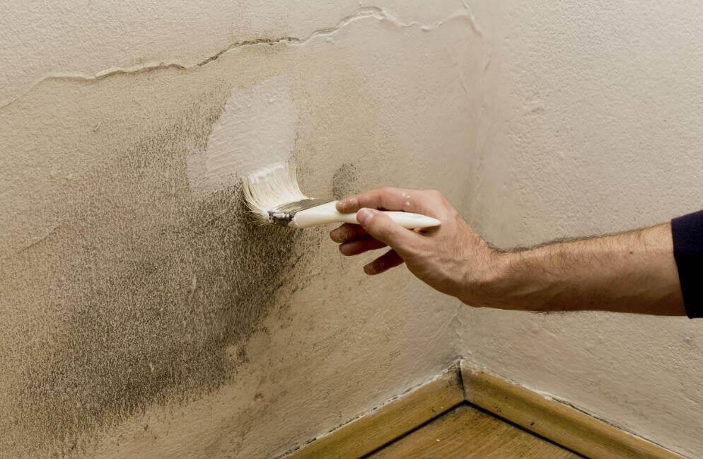 5 начина да се отървете от влагата във вашия дом