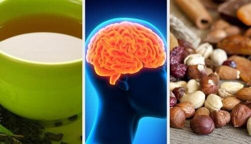 Кои храни подобряват паметта и съвети за стимулиране на мозъка