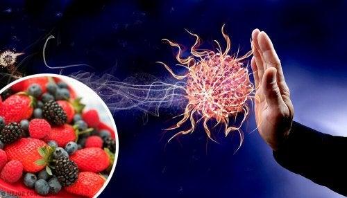 9 храни за укрепване на имунната система