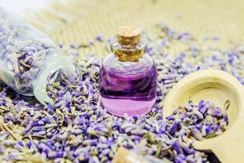 маслото от лавандула е изпитано средство за отпускане на мускулите