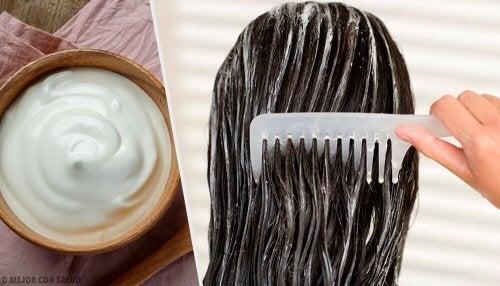 с помощта на майонезата бързо ще ускорите растежа на косата
