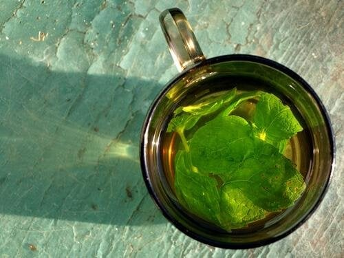 Чаят от мента спомага пречистването на бъбреците