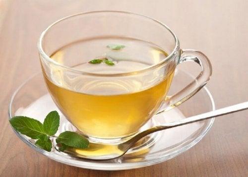 Отвара от зелен чай, джинджифил и лимон