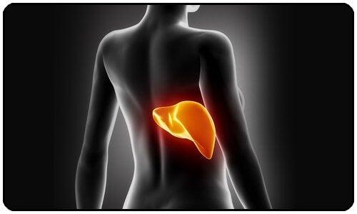 Прочистете черния си дроб, за да отслабнете