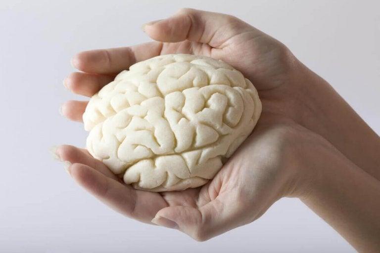 5-те най-подходящи упражнения за подобряване на паметта
