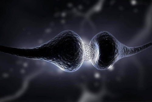 Диета за повишаване на серотонина: какво представлява и какви са ползите й