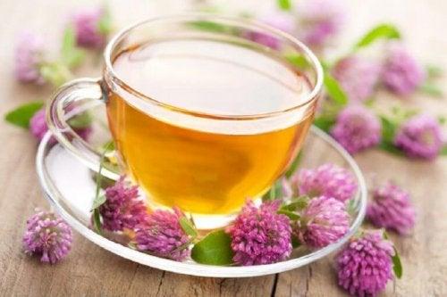 Приготвянето на билков чай от валериана се използва от векове в борбата срещу безсънието.