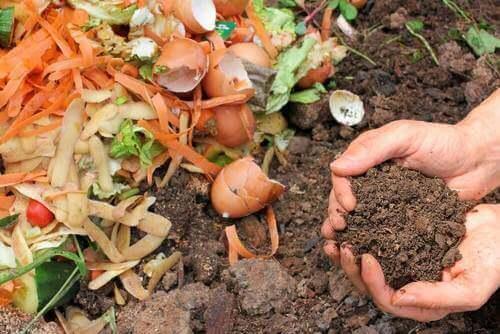 Пет начина за приготвяне на натурален компост за растенията ви