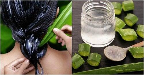 Съвети за по-здрава коса с помощта на алое