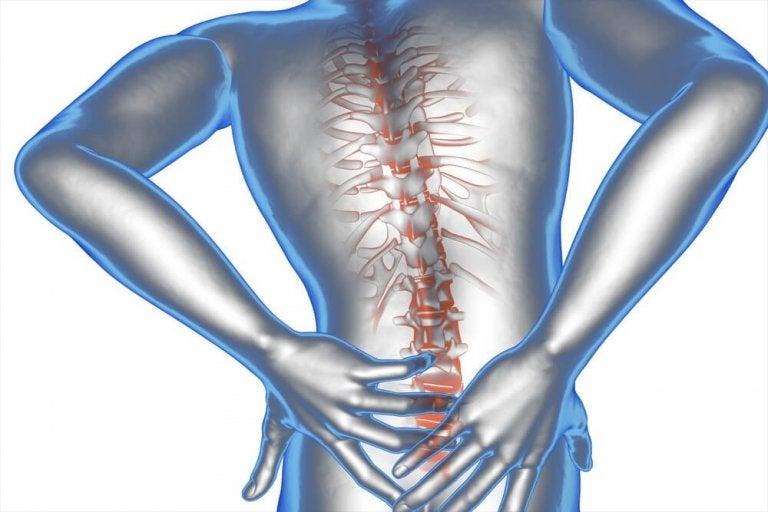 Мехлем с арника и кокосово масло при болки в долната част на гърба