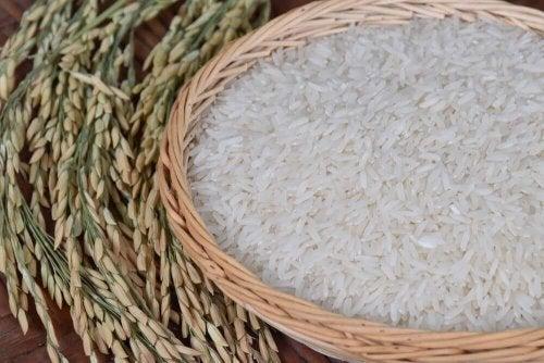 полезните качества на ориза